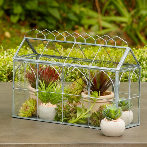 Petite Greenhouse by Birch Lane™