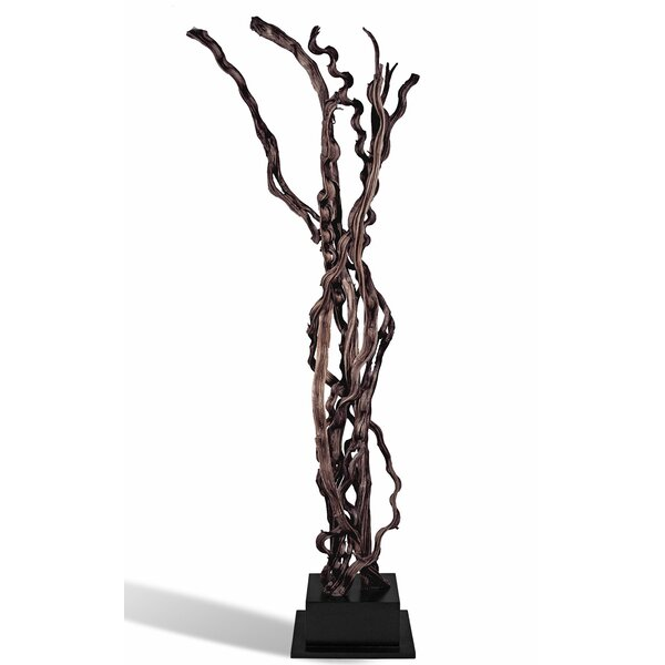 Snakewood Floor Sculpture by Ibolili