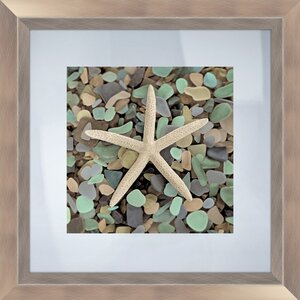 'Sea Glass Starfish' Framed Photographic Print by Highland Dunes