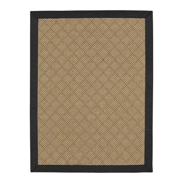 Major Sunbrella Canvas Black/Brown Indoor/Outdoor Area Rug by Highland Dunes