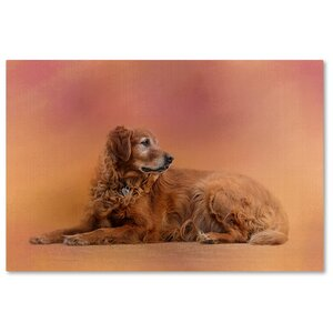 'Golden Retriever in the Setting Sun' Graphic Art Print on Wrapped Canvas by Trademark Fine Art