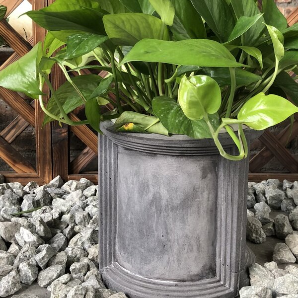 Gentry Pot Planter by Williston Forge