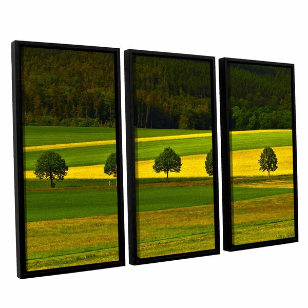 5026Aaa1 by Lindsey Janich 3 Piece Framed Photographic Print on Canvas Set by ArtWall