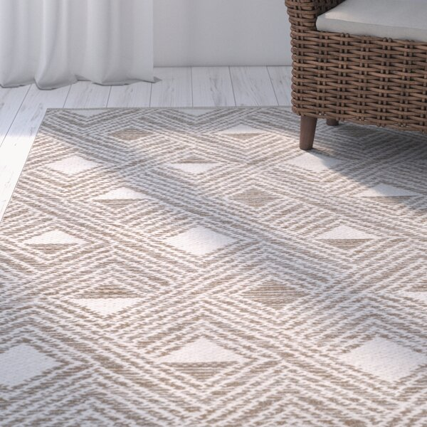 Aragam Hand-Woven Gray/Ivory Area Rug by Trent Austin Design