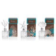 Scents & Diffusers