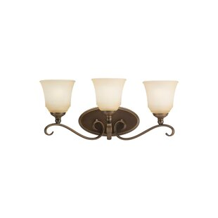 Culley 3-Light Vanity Light By Darby Home Co Wall Lights