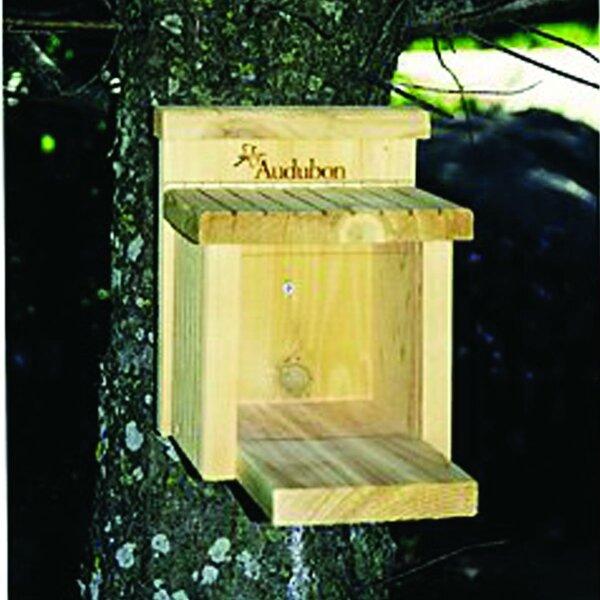Munch Box Squirrel Feeder by Audubon/Woodlink