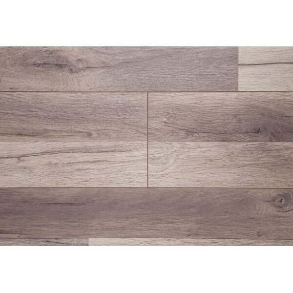 Timeless 7 x 72 x 12mm Oak Laminate Flooring in Brown by Chic Rugz