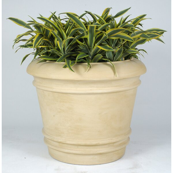 Cezar Plastic Pot Planter by Allied Molded Products