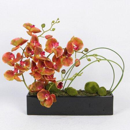Orchids/Mixed Floral Arrangement in Decorative Vase by Bayou Breeze