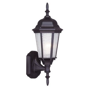 Reviews Christian 1-Light Outdoor Sconce By Darby Home Co