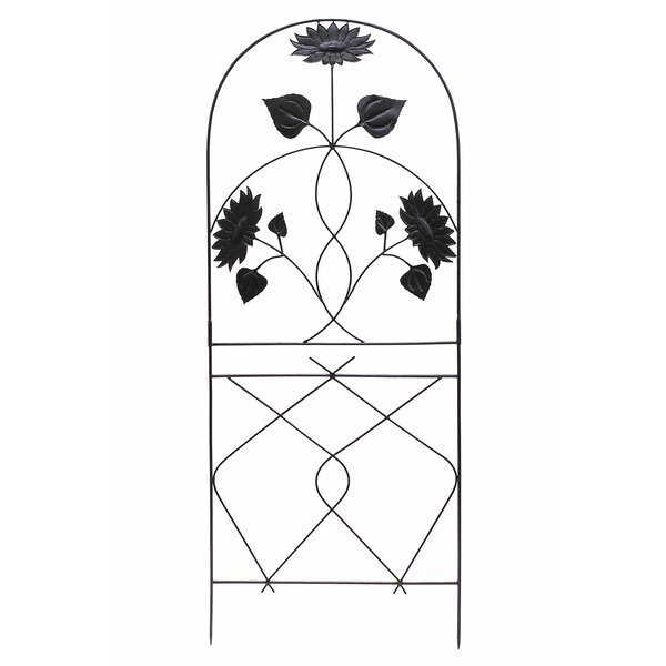 Sunflower Iron Arched Trellis by ACHLA
