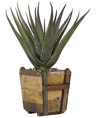 Aloe Floor Plant in Planter by Bay Isle Home