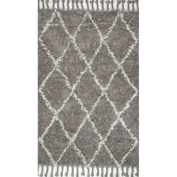 Caiden Hand-Knotted Gray Area Rug by Langley Street