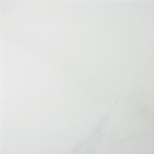 Marble 12 x 12 Field Tile in Thassos White by Emser Tile