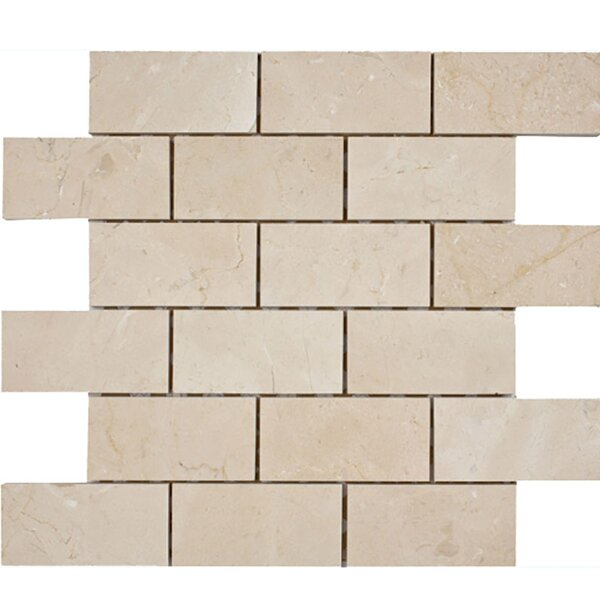 Crema Marfil Brick 2 x 4 Stone Mosaic Tile Honed by Parvatile