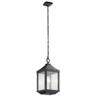 Order Halstead 1-Light Outdoor Hanging Lantern By Charlton Home