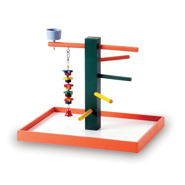 Pet Products Big Steps Playground by Prevue Hendryx