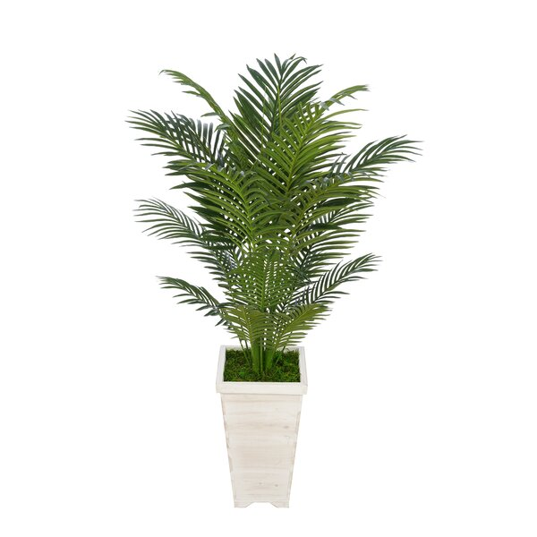 Artificial Floor Areca Palm Tree in Planter by Bay Isle Home