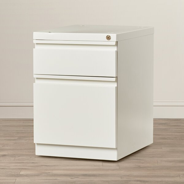 Brusnice 2-Drawer Mobile Vertical File by Latitude Run