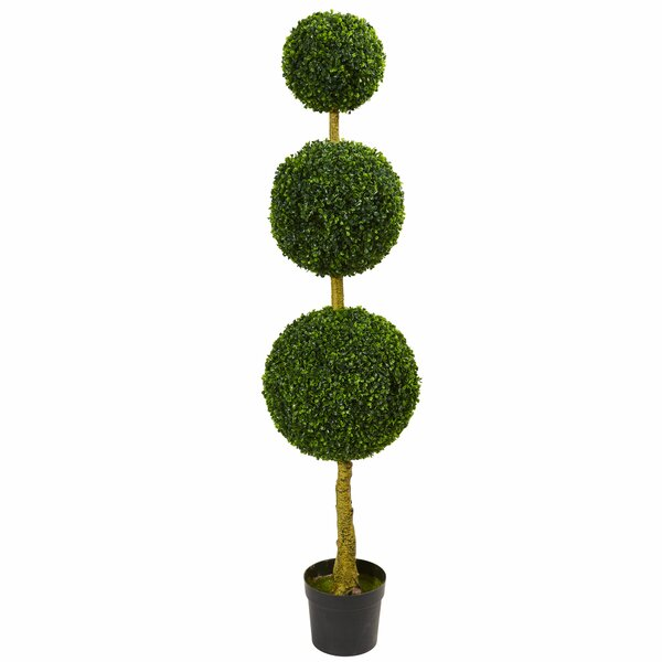 Triple Ball Boxwood Topiary by Fleur De Lis Living