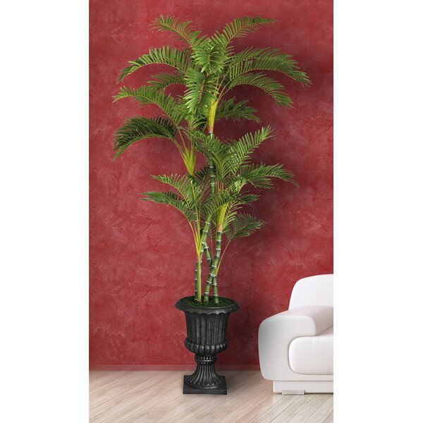 Tall Floor Palm Tree in Urn by Bloomsbury Market