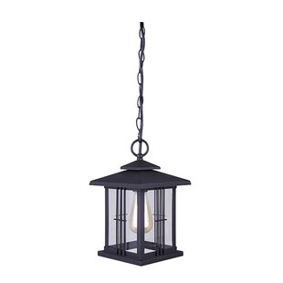 Shop for Barnesbury 1-Light Outdoor Hanging Lantern By Gracie Oaks