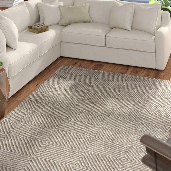 Marcelo Flat Woven Cotton Gray Area Rug by Mercury Row
