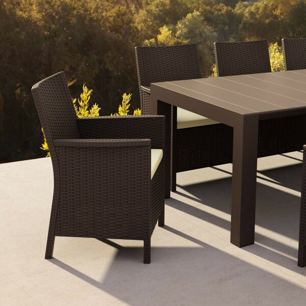 Guth California Resin Wickerlook Chair (Set of 2) by Ivy Bronx Ivy Bronx