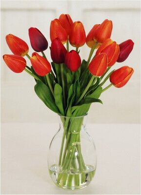 Pointed Tulip Centerpiece in Egg Shape Vase by Alcott Hill
