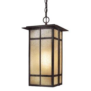 Reviews Santa Clara 1-Light Outdoor Hanging Lantern By Bloomsbury Market