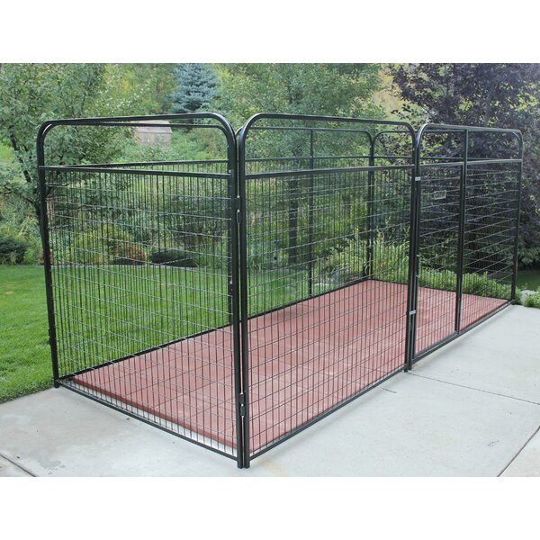 Allie Welded Wire Steel Yard Kennel by Tucker Murphy Pet
