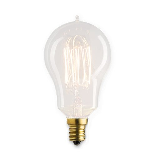 25 Watt A15 Incandescent, Light Bulb, Soft White (1800K) E12/Candelabra Base (Set of 5) by Bulbrite Industries