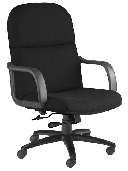 Ergonomic Executive Chair by Mayline Group