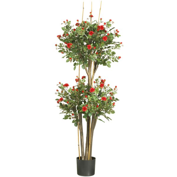 Mini Rose Round Topiary in Pot by Darby Home Co