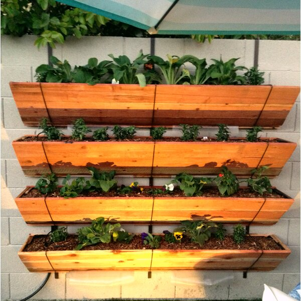 Astaneh 4 Tier Hanging Wood Vertical Garden by August Grove