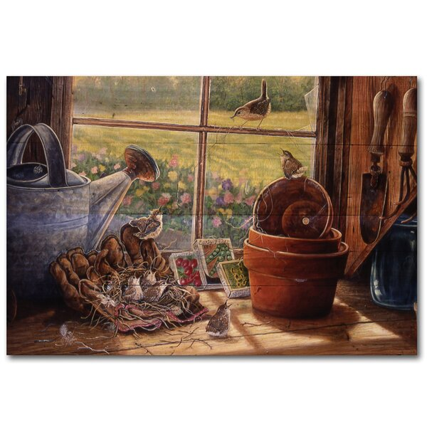 Garden Shed Wren Painting Print Plaque by WGI-GALLERY