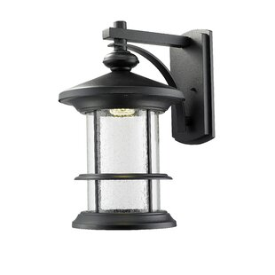 Affordable Price Crow 1-Light Outdoor Wall Lantern By Breakwater Bay