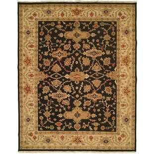 Reviews Apte Hand-Woven Black/Beige Area Rug By Meridian Rugmakers