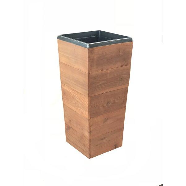 Campton Rustic Cedar Planter Box by Foundry Select