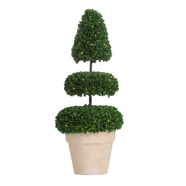 Pre-Light Faux Floor Boxwood Topiary by Ivy Bronx