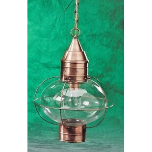 Bargain 600 Series 1-Light Outdoor Hanging Lantern By Brass Traditions