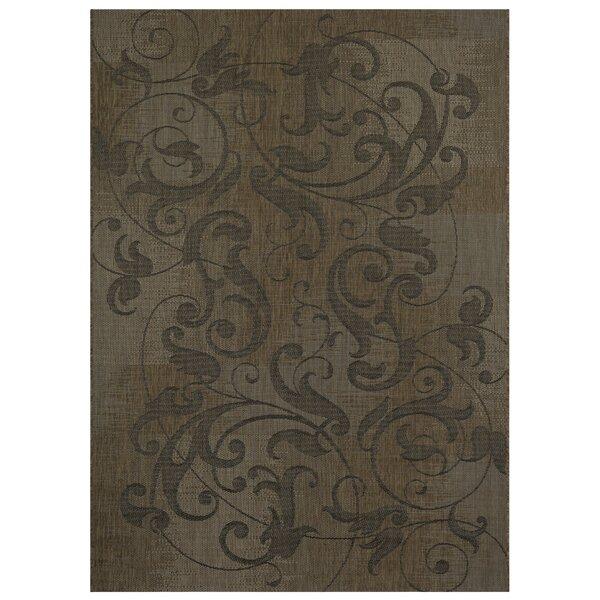 Savage Distressed Scroll Dark Brown Indoor/Outdoor Area Rug by Fleur De Lis Living