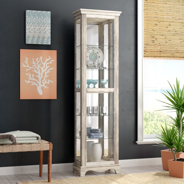Tiano Weathered Standard Curio Cabinet by Charlton Home