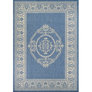 Savings Miley Blue Indoor/Outdoor Area Rug By August Grove
