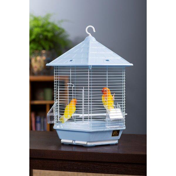 Ivy Bird Cage by Archie & Oscar