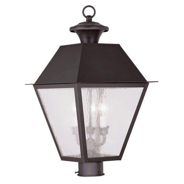 Cynda Outdoor 3-Light Lantern Head by Darby Home Co