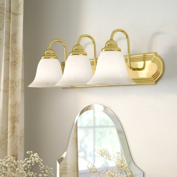 Gurney 3-Light Vanity Light by Three Posts