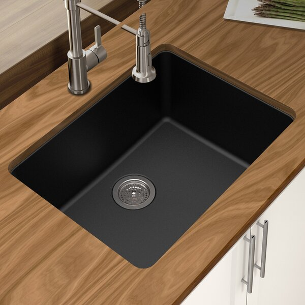 Granite Quartz 25 L x 18.5 W Single Bowl Undermount Kitchen Sink by Winpro