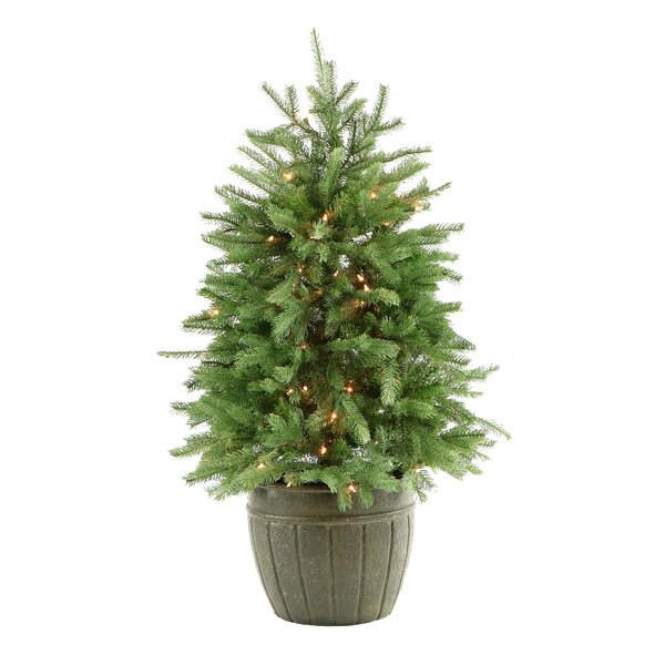 Potted 48 Green Pine Artificial Christmas Tree with 100 Clear/White Lights by The Holiday Aisle